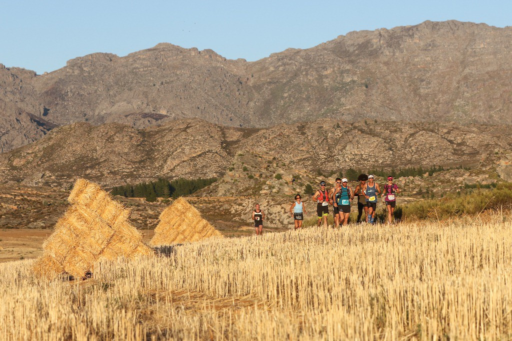 The leading contenders, including Katja Soggot, of the 2017 Tankwa Trail, traverse a field of harvested alfalfa, in the early kilometres of Stage 3. Photo by Oakpics.com.